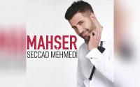 Seccad Mehmedi - Yürek Sevdamız Olmaz