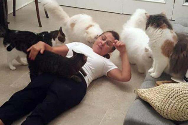 Kedileri Nilüfer'i Böyle Karşıladı!